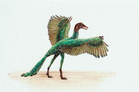 focus_archaeopteryx