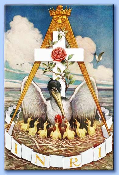 Il Pellicano la Simbologia Esoterica e Cristiana (di Pasquale Sciandra)