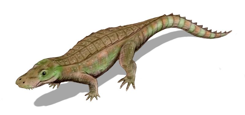 Anatosuchus_BW
