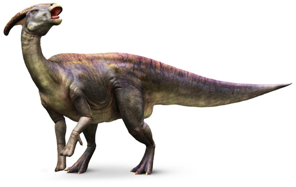 Parasaurolophus_mh9k5i