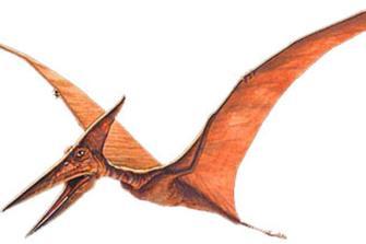 i-10-dinosauri-piu-famosi_1ad60608d8825f4a6e048efa8b148aef