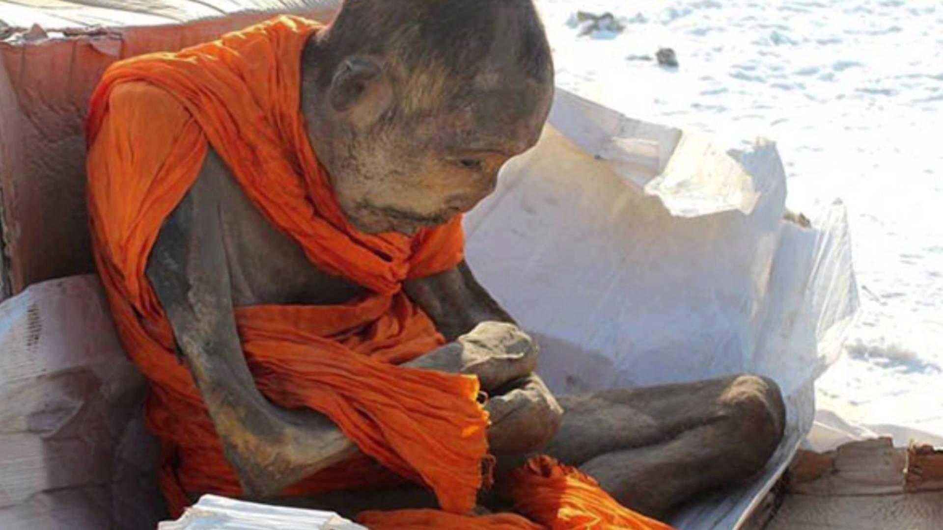 Dopo 200 anni ritrovato il corpo di un monaco buddista ancora in meditazione